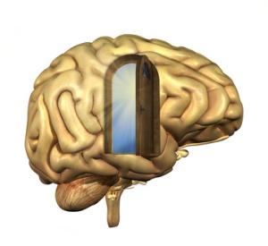 Psychologie en Transitiemanagement, draagvlak vinden en behouden